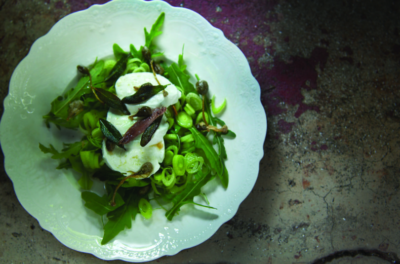 Buffalo Mozzarella Salad with Fennel and Capers